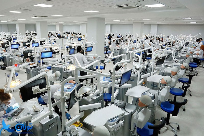 رشته دندان پزشکی دانشگاه مدیپل